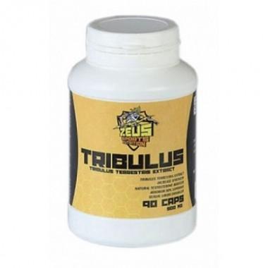 Tribulus Трибулус 90% сапонинов 500 мг, 90 капсул, Zeus Nutrition в Атырау